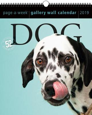 2019 Dog Gallery Wall Page-A-Week Gallery Wall Calendar (Calendar)