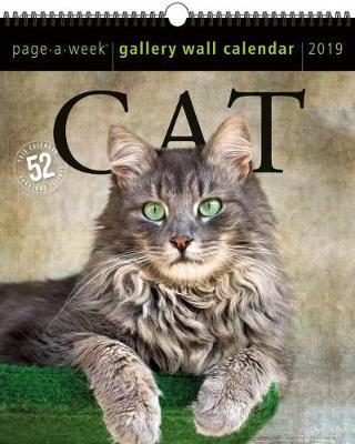 2019 Cat Gallery Wall Page-A-Week Gallery Wall Calendar (Calendar)