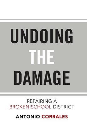 Undoing the Damage: Repairing a Broken School District (Hardback)