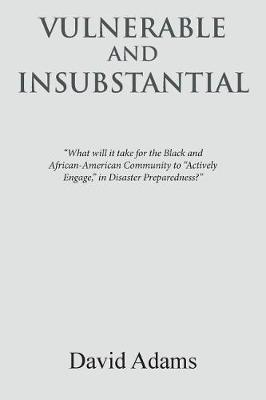 Vulnerable and Insubstantial: What Will It Take? (Paperback)