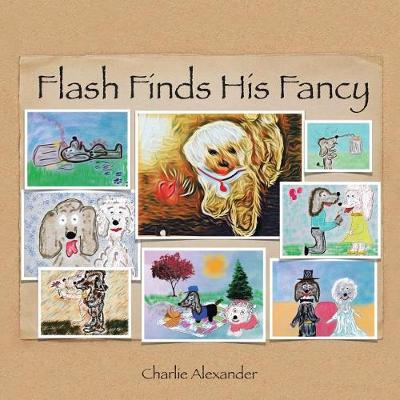 Flash Finds His Fancy (Paperback)