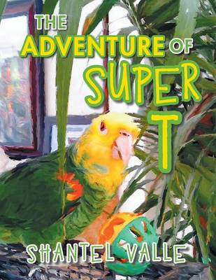 The Adventure of Super T (Paperback)