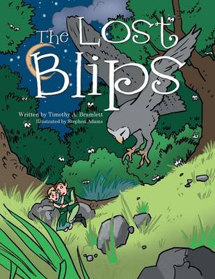 The Lost Blips (Paperback)