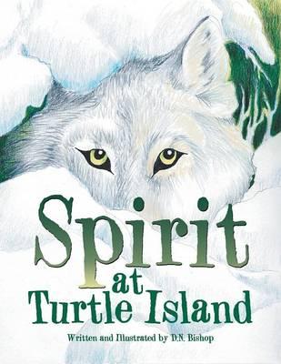 Spirit at Turtle Island (Paperback)