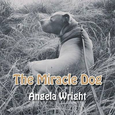 The Miracle Dog (Paperback)