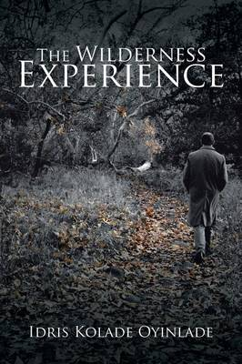 The Wilderness Experience (Paperback)