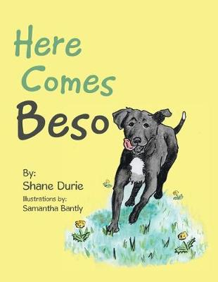 Here Comes Beso (Paperback)
