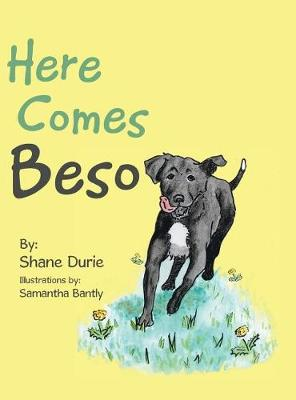 Here Comes Beso (Hardback)