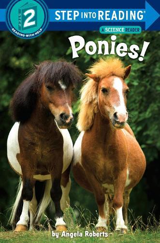 Ponies! (Paperback)
