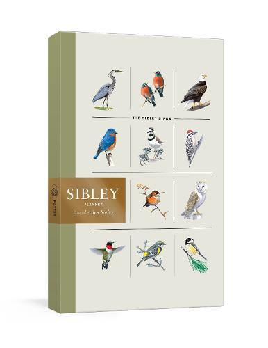 Sibley Week-at-a-Glance Diary
