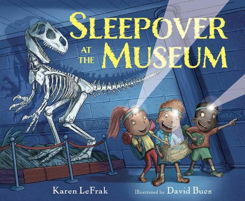 Sleepover At The Museum (Hardback)