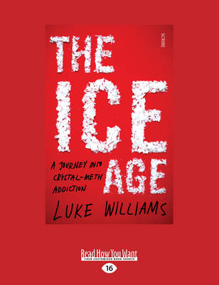 The Ice Age: A Journey into Crystal-Meth Addiction (Paperback)