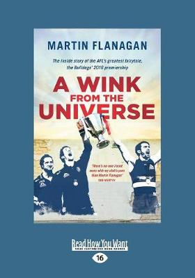 A Wink From the Universe (Paperback)