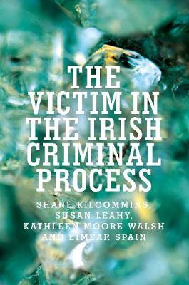 The Victim in the Irish Criminal Process (Paperback)