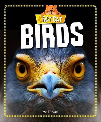 Fact Cat: Animals: Birds - Fact Cat: Animals (Paperback)