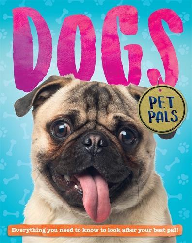 Pet Pals: Dog - Pet Pals (Hardback)