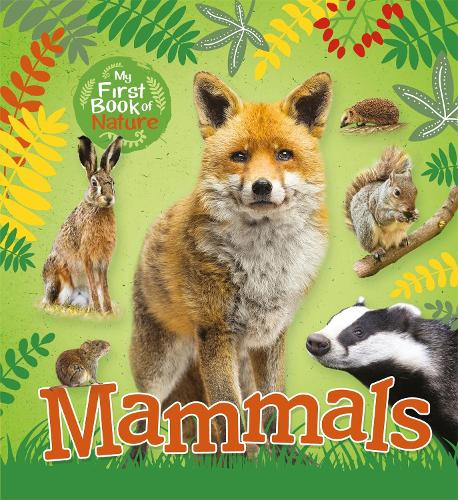 My First Book of Nature: Mammals - My First Book of Nature (Paperback)