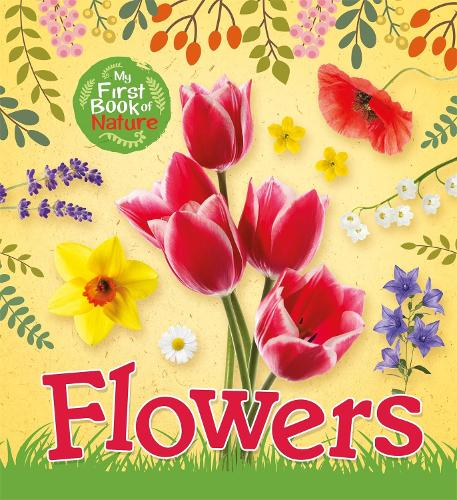 My First Book of Nature: Flowers - My First Book of Nature (Paperback)