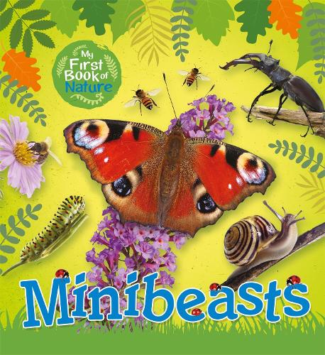 My First Book of Nature: Minibeasts - My First Book of Nature (Hardback)