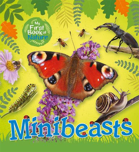 My First Book of Nature: Minibeasts - My First Book of Nature (Paperback)