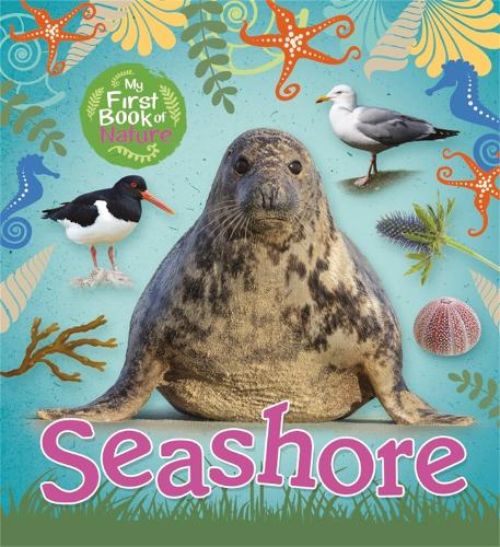 My First Book of Nature: Seashore - My First Book of Nature (Paperback)