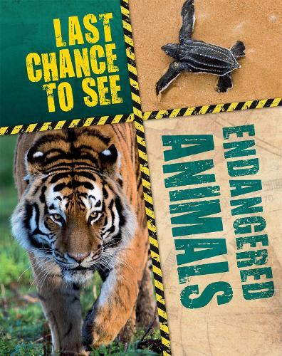 Last Chance to See: Endangered Animals - Last Chance to See (Paperback)