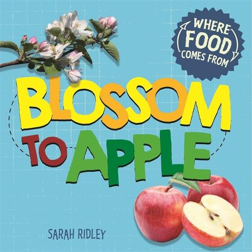 Where Food Comes From: Blossom to Apple - Where Food Comes From (Paperback)