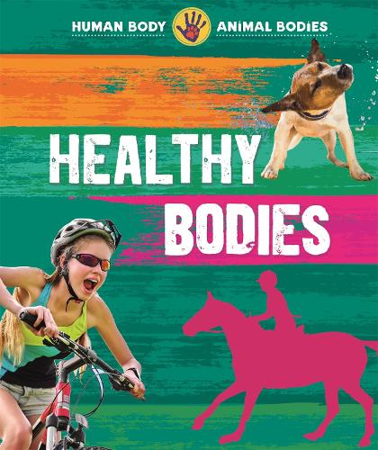 Human Body, Animal Bodies: Healthy Bodies - Human Body, Animal Bodies (Paperback)