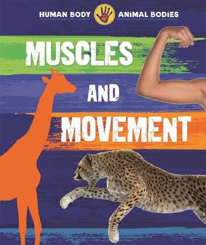 Human Body, Animal Bodies: Muscles and Movement - Human Body, Animal Bodies (Paperback)