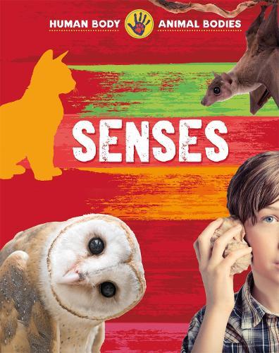 Senses - Human Body, Animal Bodies (Paperback)