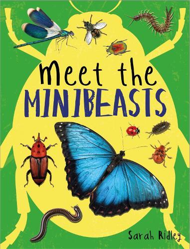Meet the Minibeasts (Paperback)