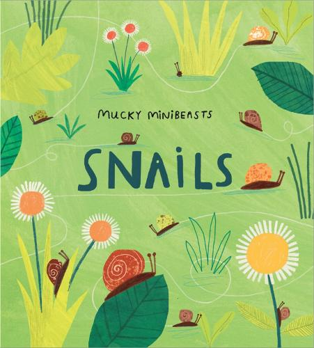 Mucky Minibeasts: Snails - Mucky Minibeasts (Paperback)