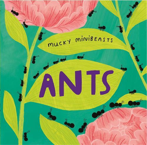 Mucky Minibeasts: Ants - Mucky Minibeasts (Paperback)