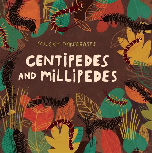 Mucky Minibeasts: Centipedes and Millipedes - Mucky Minibeasts (Paperback)