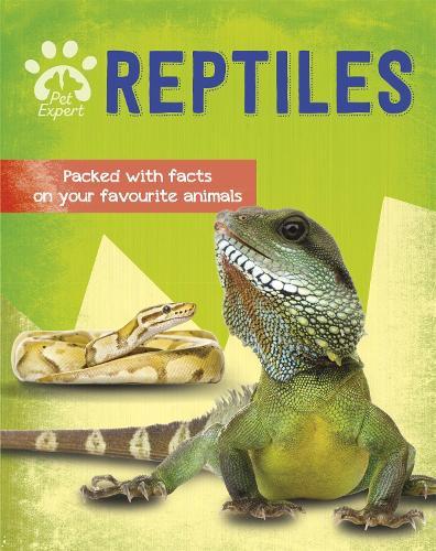 Pet Expert: Reptiles - Pet Expert (Paperback)