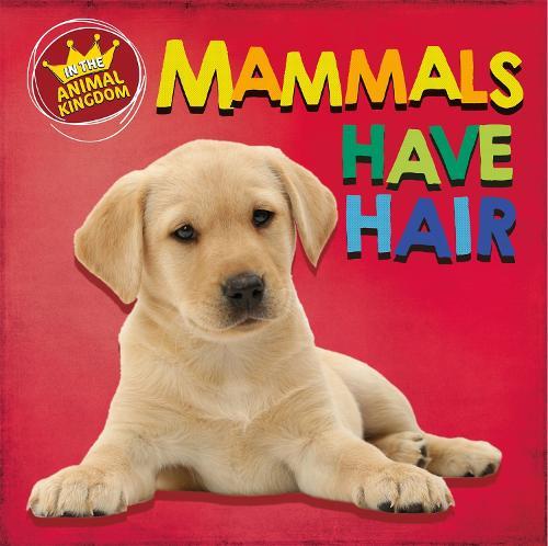 In the Animal Kingdom: Mammals Have Hair - In the Animal Kingdom (Hardback)