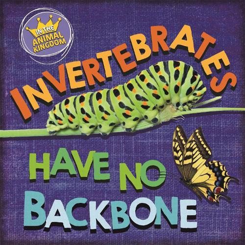 In the Animal Kingdom: Invertebrates Have No Backbone - In the Animal Kingdom (Hardback)