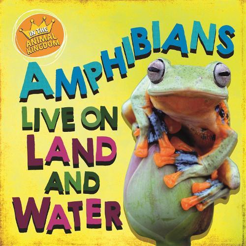 In the Animal Kingdom: Amphibians Live on Land and in Water - In the Animal Kingdom (Hardback)