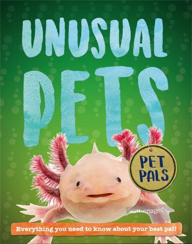 Pet Pals: Unusual Pets - Pet Pals (Hardback)