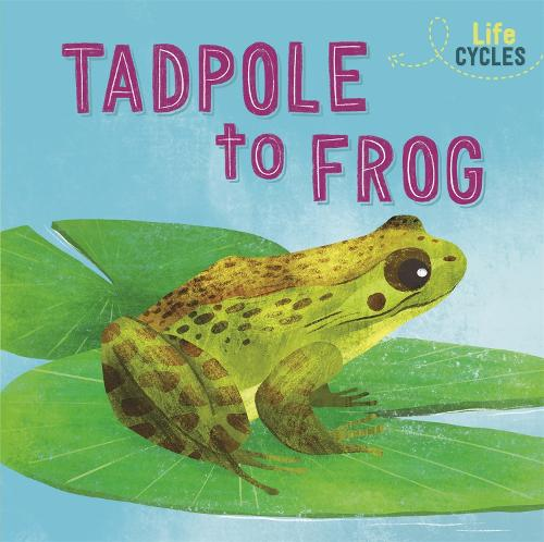 Life Cycles: From Tadpole to Frog - Life Cycles (Paperback)
