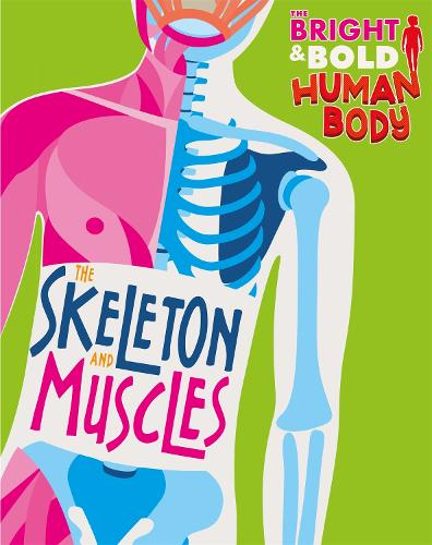 The Bright and Bold Human Body: The Skeleton and Muscles - The Bright and Bold Human Body (Paperback)