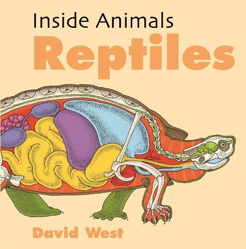 Reptiles - Inside Animals (Paperback)