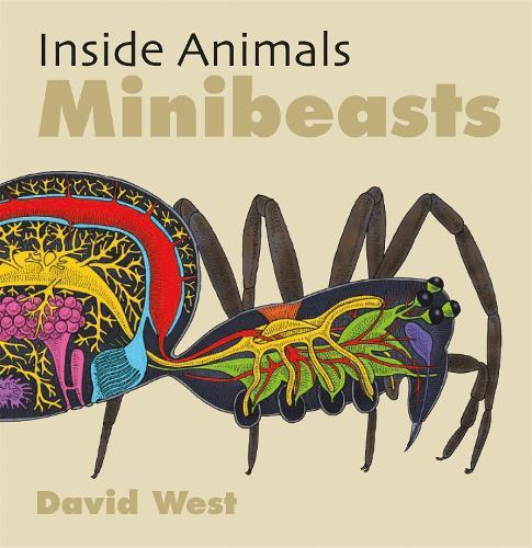 Inside Animals: Minibeasts - Inside Animals (Paperback)
