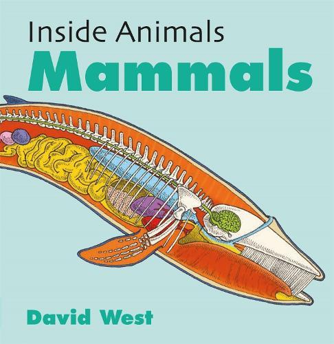 Inside Animals: Mammals - Inside Animals (Paperback)