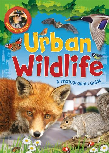 Nature Detective: Urban Wildlife - Nature Detective (Paperback)