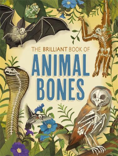 The Brilliant Book of Animal Bones (Hardback)