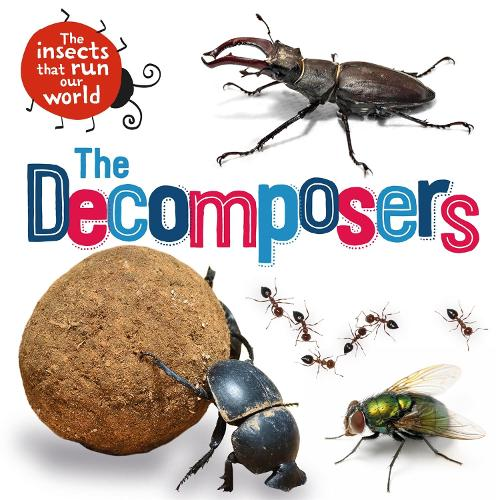 The Insects that Run Our World: The Decomposers - The Insects that Run Our World (Hardback)