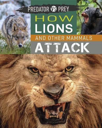 Predator vs Prey: How Lions and other Mammals Attack - Predator vs Prey (Hardback)