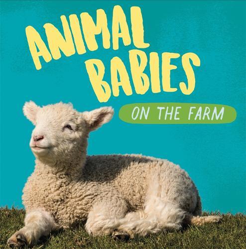 On the Farm - Animal Babies (Hardback)