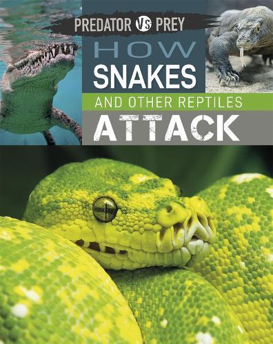 Predator vs Prey: How Snakes and other Reptiles Attack - Predator vs Prey (Hardback)
